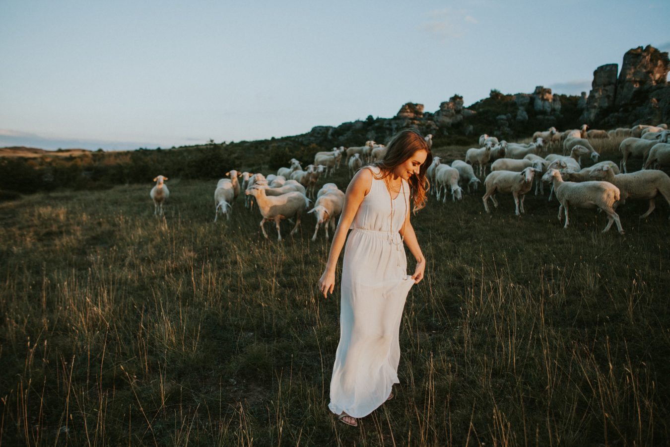 Sheep larzac culture landscape portrait