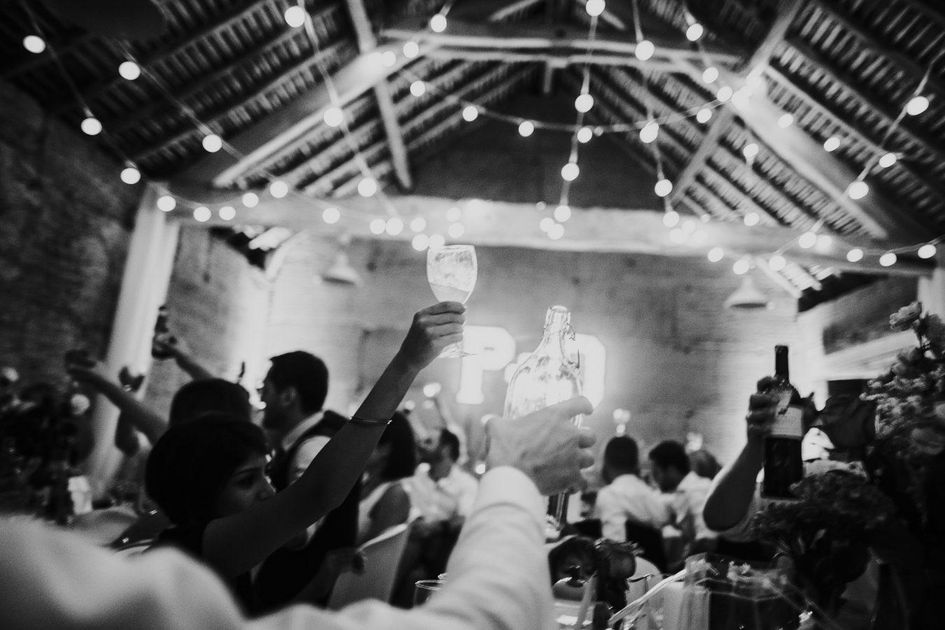 Savoie wedding photographer party